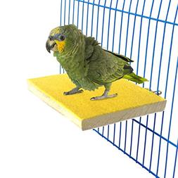 BWOGUE Colorful Bird Perch Stand Platform,Natural Wood Paw G