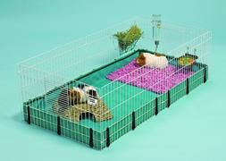 Hamster Cages And Habitats Large Accessoires Guinea Pig Hedg