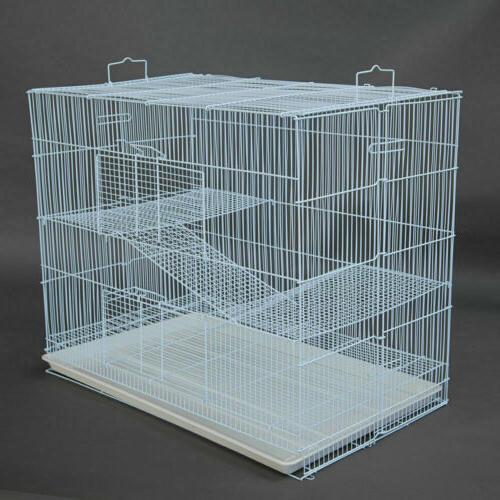 3 for Pig Glider Chinchilla