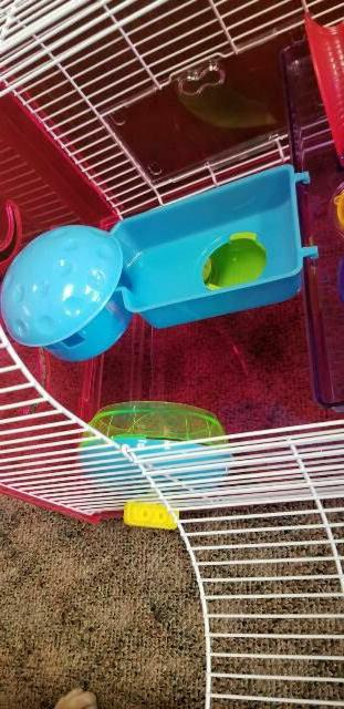 H1812A DWARF HAMSTER CAGE. SO FUN ACTIVES FOR HAMSTER