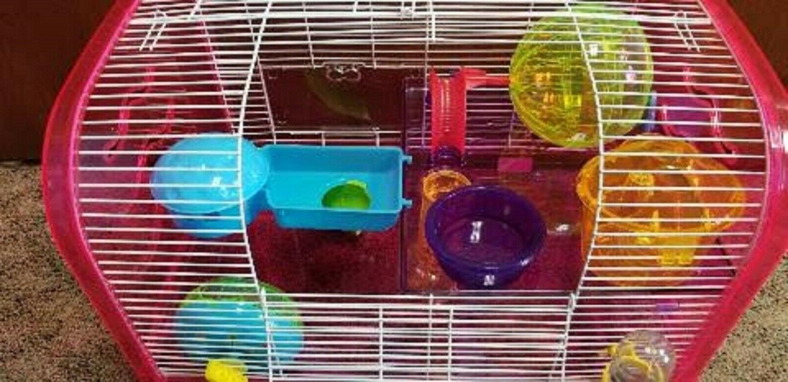 H1812A DWARF HAMSTER SO MANY FUN ACTIVES FOR