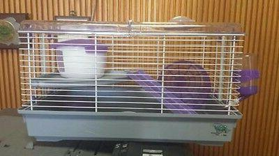 hamster cage lino purple great