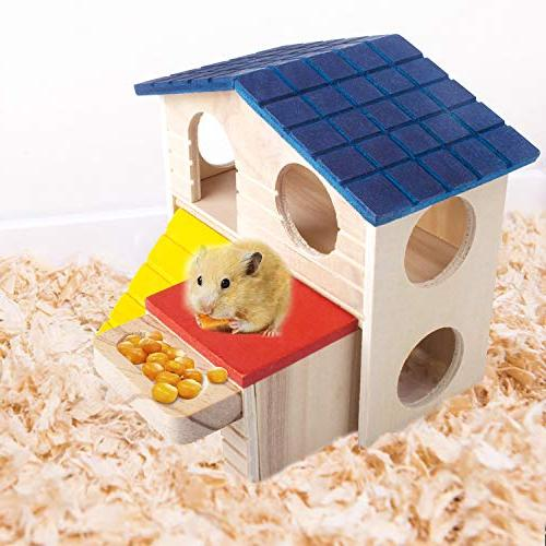 with Slide, Hideout Habitat for Dwarf Mice, Sugar Gliders