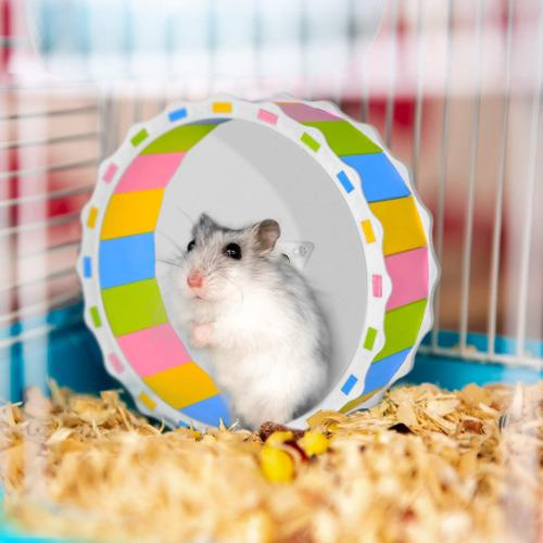 Hamster Toy Silent Exercise Attachment Running
