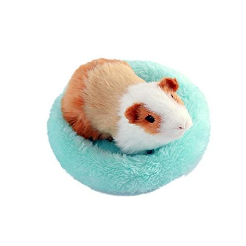 pet hamster round velvet sleep