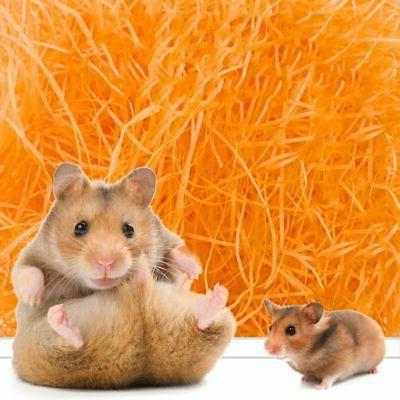 Hamster Paper Toy Small Nesting US