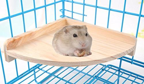 pet hamster wood cage perch