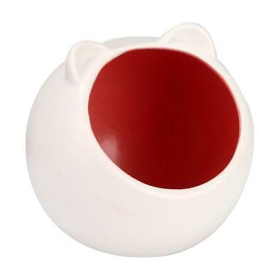 red white pet mini cute summer cooling