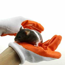 protective gloves avoid biting hands